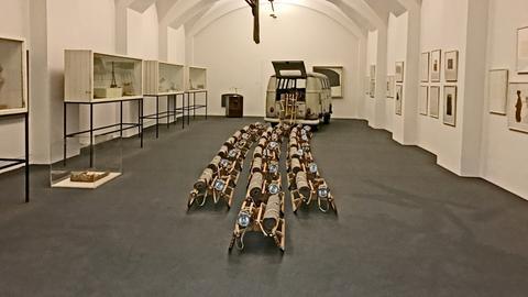 Rauminstallation mit The pack (Das Rudel) in der Neuen Galerie
