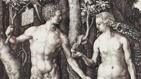 Albrecht Dürer in Darmstadt