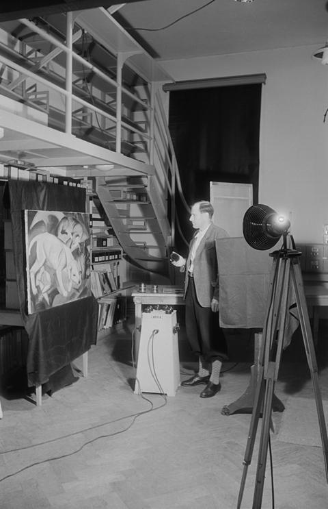 """Fotograf Eugen Fink lichtet im Staatsarchiv Franz Marcs Gemälde """"Hund, Katze, Fuchs"""" von 1912 ab (Mannheim, Kunsthalle), Februar 1946"""