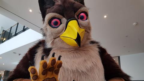 Vogelkostüm