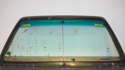 Windschutzscheibe mit toten Insekten