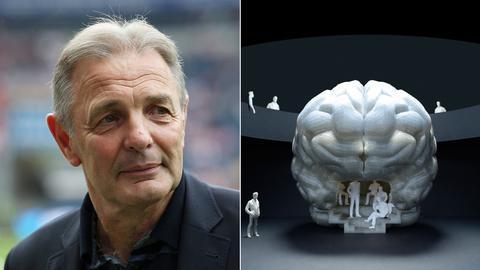 Ein Modell des Gehirns des Frankfurter Fußball-Idols Charly Körbel wird bald im Senckenberg Museum zu sehen sein.