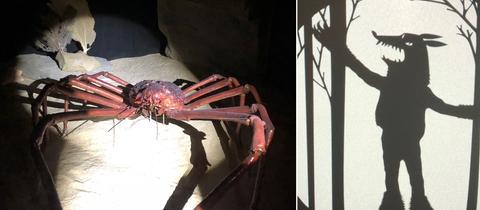 Ausstellungsstücke: Große Krabbe, Schattenspiel Wolf