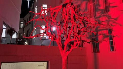 """Lichtinstallation vor dem Jüdischen Museum Frankfurt - Schattenspiel der Skulptur """"Untitled"""" - zwei an den Kronen verwobene Bäume"""