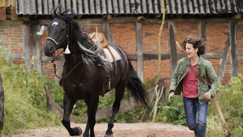 Pferd von genommen wird frau Die Letzten
