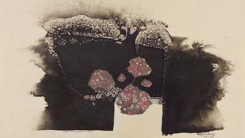 Algen am schwarzen Stein - Tuschezeichnung, 1962