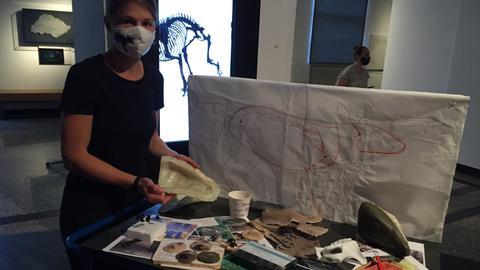 Präparatorin Susan Steinmetzger vom Landesmuseum Darmstadt mit Materalien zur Modellierung eines Urpferds aus der Grube Messel