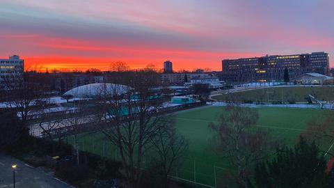 Das Frankfurter Nordend am Morgen vom HR-Sendezentrum aus gesehen.