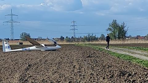 Segelflugzeug Lampertheim