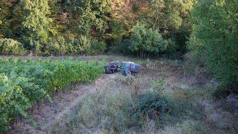 Umgestürzter Traktor auf Weinberg