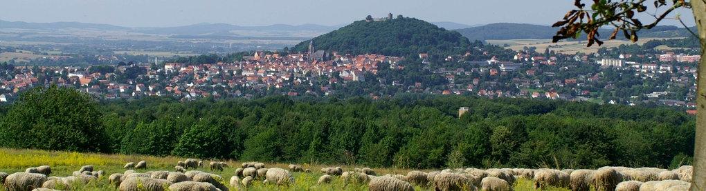 Stadtansicht Homberg Efze