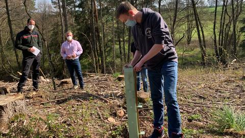 Lehrer pflanzen Setzlinge im Alsfelder Abi-Wald ein.