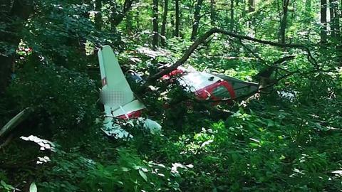 Das Flugzeugwrack im Wald bei Dreieich