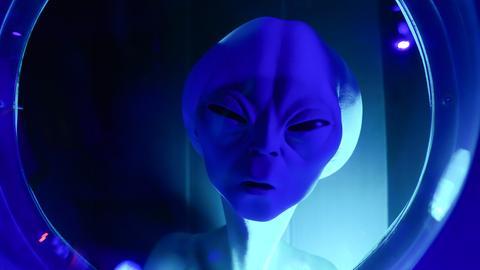 Außerirdischer schaut aus einem Fenster