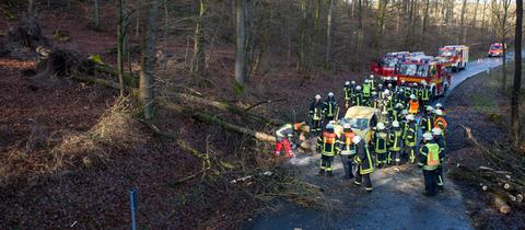 Bei Eppstein stürzte ein Baum auf ein fahrendes Auto. Der Fahrer musste aus dem Wrack geborgen werden.