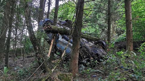 Auto liegt auf dem Dach im Wald