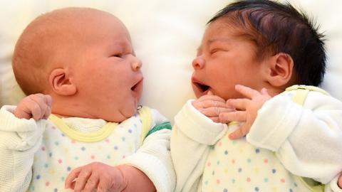 Zwei Babys schauen sich an.