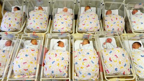 Babys Neugeborene