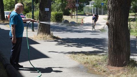 Ein Mann wässert in der Heinrich-Fuhr-Straße in Darmstadt einen Baum. Aufgrund anhaltener Trockenheit hat die Stadt Darmstadt ihre Bürger aufgefordert, bei der Bewässerung von Bäumen zu helfen.