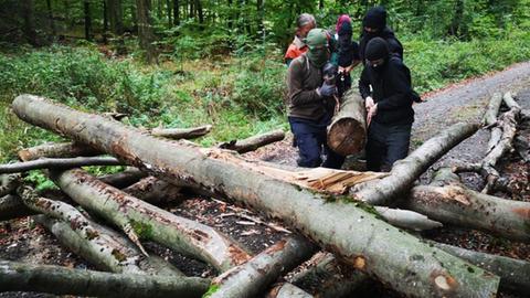 Waldbesetzer bauen Barrikaden im Maulbacher Wald.