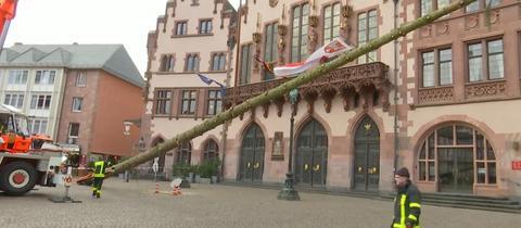 Weihnachtsbaum Frankfurt.Frankfurter Weihnachtsbaum Kommt Vom Römer In Die Kneipe