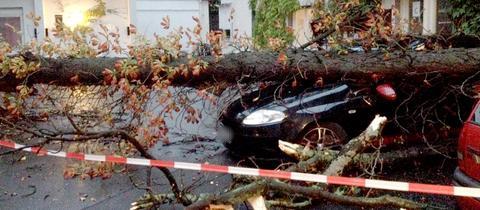 Ein Baum liegt auf einem Auto in Darmstadt-Eberstadt