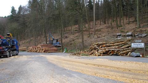 Gefällte und aufgestapelte Bäume an der B45