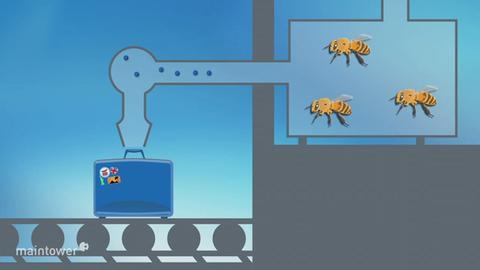Grafik: So könnten Bienen am Gepäckband eingesetzt werden.