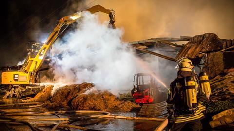 Feuerwehreinsatz auf Reiterhof