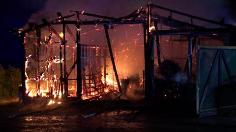 Bei einem Brand auf einem Bauernhof in Frankenau sind rund 50 Kühe verendet.