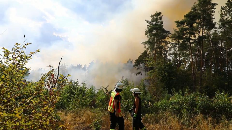 Feuerwehrleute bei Waldbrand in Mörfelden