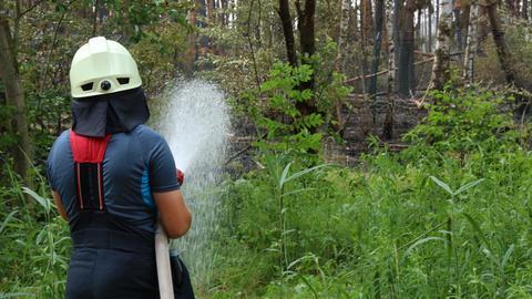 Löscharbeiten bei Waldbrand in Münster. Im Hintergrund ist ein Teil des verbrannten Waldes zu erkennen.