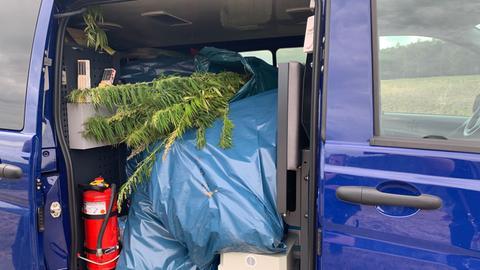 Säcke mit Cannabis-Pflanzen liegen in einem Polizeibus
