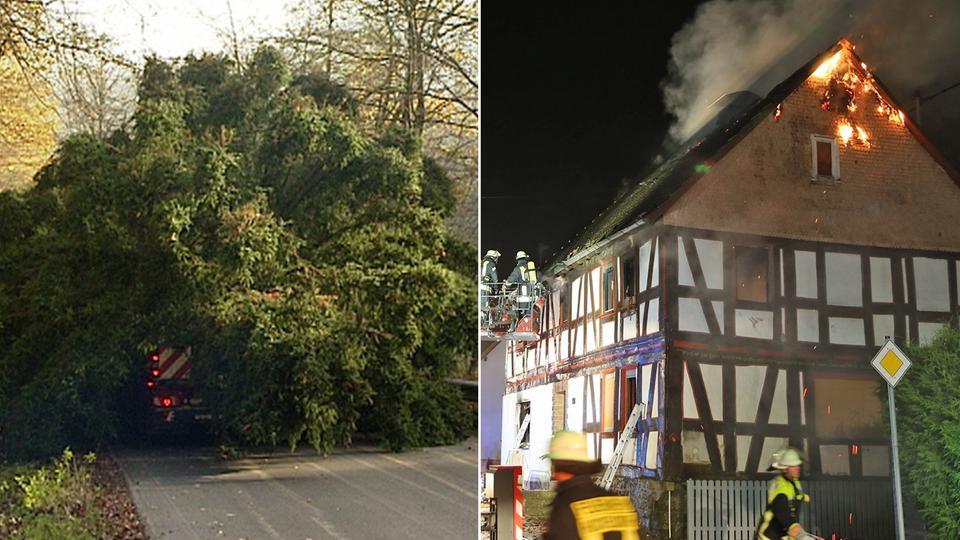 weihnachtsbaum in frankfurt brand in m cke und. Black Bedroom Furniture Sets. Home Design Ideas