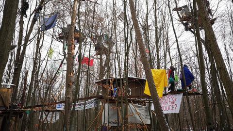 Aktivisten haben Baumhäuser gebaut.