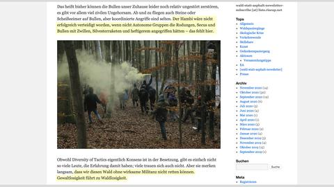 Screenshot von der Internetseite, auf der Aktivisten angeheuert werden.