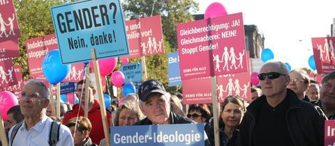 """Gegner des neuen Sexualkunde-Lehrplans bei der """"Demo für alle"""" im Herbst 2016 in Wiesbaden"""