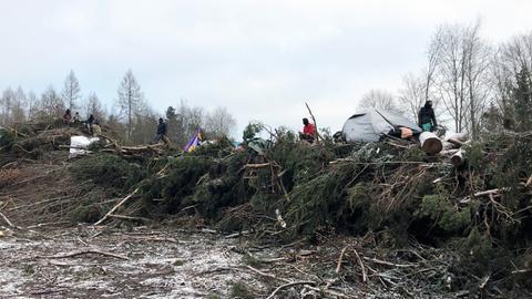 Demonstranten im Dannenröder Forst