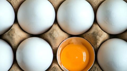 Eier im Karton - eines ist geöffnet und man sieht ein Dotter.