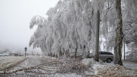 Eisregen im Taunus