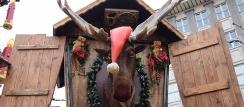 Elchkopf auf Kasseler Weihnachtsmarkt