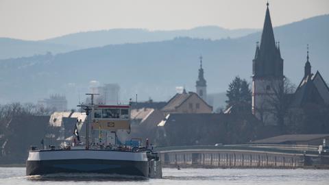 Eltville Rhein Frühling