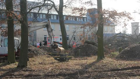 Ein Baum liegt quer in einem kleinen Waldstück vor einem Haus, ein Rettungswagen steht bereit