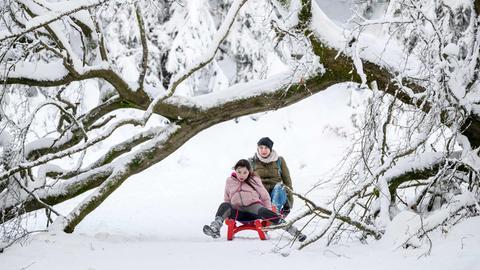 Mutter und Tochter rodeln im Taunus unter einem Baum durch, der durch die Schneelast umgefallen ist.