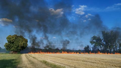 Feldbrand bei Großkrotzenburg