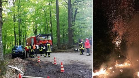 Die Flammen lodern im Seulingswald.