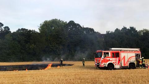 Feldbrand in Wiesbaden-Biebrich