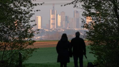 Ein Paar geht mit Hund geht spazieren, im Hintergrund die Frankfurter Skyline.
