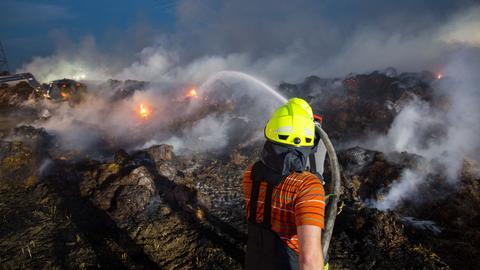 Ein Feuerwehrmann löscht den Feldbrand bei Bischofsheim