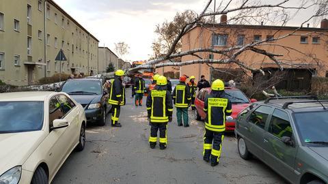 Sturmschäden Feuerwehr Frankfurt Einsätze